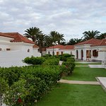 Bungalows with patio and front gardens