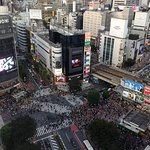 View from the hotel (Shibuya Crossing)
