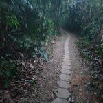 Posada Amazonas Foto