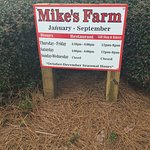 Mike's Farm and Country Store