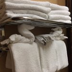 Loved the plentiful towels, especially the swans!