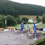 Gasthof zur Birke Foto