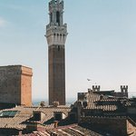 Bell Tower in Piazza del Campo from our Window!
