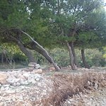 Liberatos Village Foto