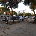 Foto de Camping la Buganvilla