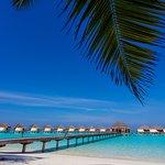 Foto de Kanuhura - Maldives
