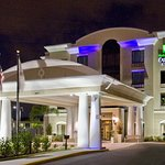 Photo de Holiday Inn Express & Suites Tampa USF-Busch Gardens