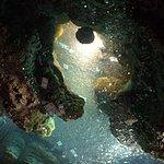Photo of Luray Caverns