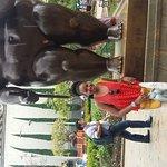 20161013_131805_large.jpg