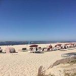 Coronado Municipal Beach Foto