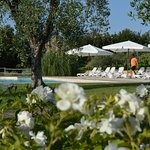 Agriturismo L'Antica Fornace Photo