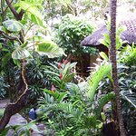 Adus Beach Inn Foto