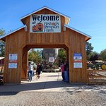 Gateway to Pumpkins and Farm fresh goodies.