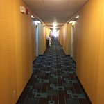 Photo de Fairfield Inn & Suites Minneapolis Bloomington/Mall of America