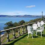 View out over Lake Rotorua