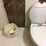 See the condition of toilets of this executive room .