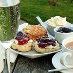 """A """"Sparkling Cream Tea"""" in the garden"""