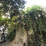Photo of Riad Jardin Chrifa