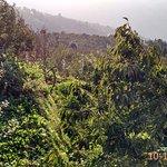 Banjara Camps - Thanedar Photo