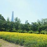 Foto di Olympic Park