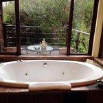 Foto de Elephant Hide of Knysna Guest Lodge