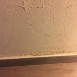 Water Seepage walls in the Room