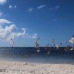 Fort Island Gulf Beach