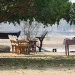 Foto de Mchenja Bush Camp - Norman Carr Safaris