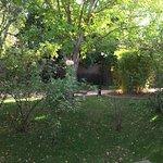 The smaller garden