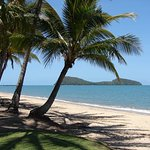 Palm Cove/Double Island