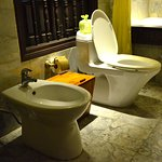 old style bidet and toilet