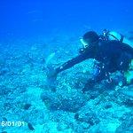Photo de Castaway Island Fiji