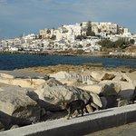 Sicht auf Naxos Stadt