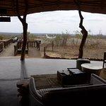 Foto di Leopard Hills Private Game Reserve