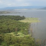 Nakurusee Foto