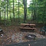 Picnic benches and firepit.