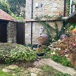 Garden at back of cottage