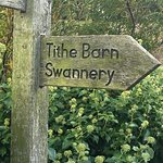 Path to the Swannery