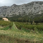 Photo of Montagne Sainte Victoire