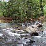 Algama Falls