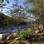 View of Kern River from our RV spot