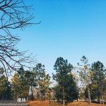 Caoyu Park