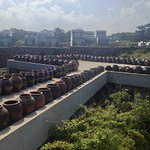 1000s of pottery for making bean paste, typical for Korea