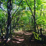 Beautiful fall advanced mountain bike ride