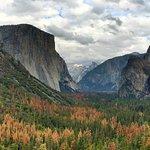 Visit Yosemite   Madera County Main Visitors Center
