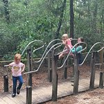 Tallahassee Museum Foto