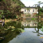 The Waterwheel Inn Foto