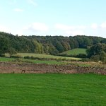 Countryside surrounding the enchanting Beauvale Priory