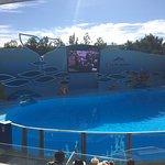 Photo of Zoomarine Algarve