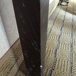 Mold on desk leg Room 422